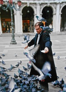 The magic of Pigeons